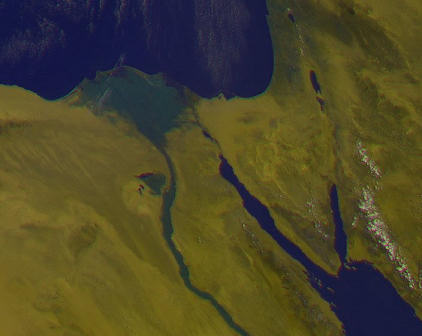 Nile showing vegetation