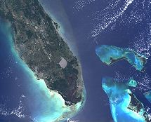 False-colour image of Florida from James Brown